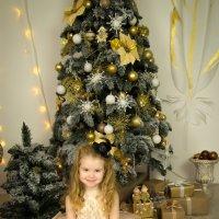 Маленькая принцесса! :: Алексей Кудрин