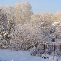 Зимний сад, зимний сад, белым сном деревья спят... :: Елена Ярова
