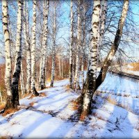 В путь.. :: Александр Шимохин