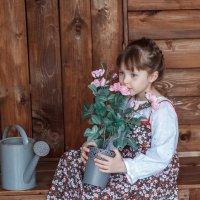 Аромат роз :: Ольга Прусова