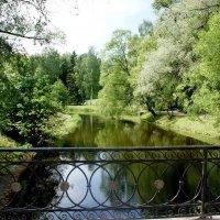 Вид с Черного моста-плотины :: Елена Павлова (Смолова)