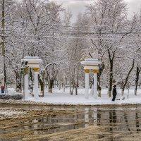 Снег и слякоть :: Игорь Сикорский