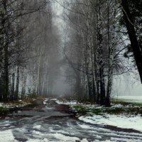 ни осень, ни зима, промозглая сырость :: Александр Прокудин