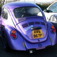 Purple Bug:-) :: Olga