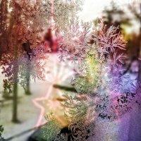 И снова в Новый год мы грезим чудесами... :: Андрей Заломленков