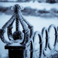 Морозное украшение :: Mari_L