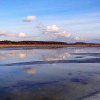 Лёд на поле, отражение облачков.. :: Антонина Гугаева