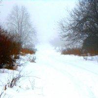 Зимний туман :: Сергей Уткин