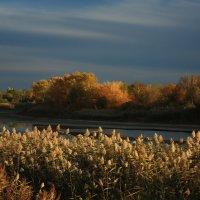 Осенний вечер :: Михаил Пахомов