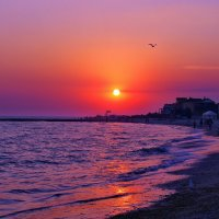 НазваниеThe Box - пляж эмоций. Такие там закаты рисовались... :: Александр Резуненко