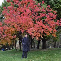 багровая осень :: Alexandr Yemelyanov