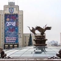 Аисты на площади Независимости в Минске :: Светлана Ку