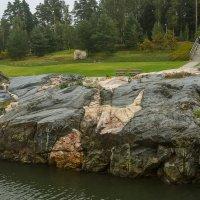 Гранитный камушек. :: leo yagonen