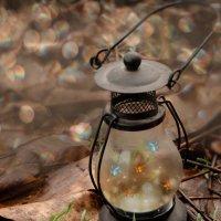 Волшебный фонарь :: Ирина Гавриличева