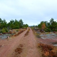 Дорога по Аландским островам :: Николай Танаев