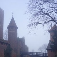 Замок и туман :: Elena N