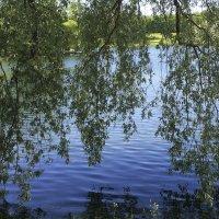 В Екатерининском парке :: Наталья