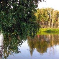 Отражение в пруду - очень красиво! :: Svetlana Lyaxovich