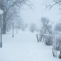 Ледяной туман. :: Алена Малыгина