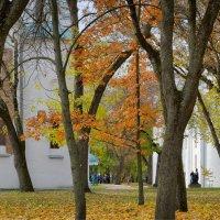 Краски осеннего Вала. :: Андрий Майковский