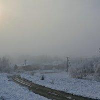 Туманное утро :: Петр Заровнев