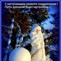 С Новым годом. :: nadyasilyuk Вознюк