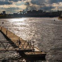 Вид с о. Балчуг на Крымский мост :: Владимир Брагилевский