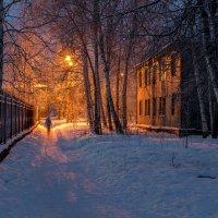 Ночь, улица, фонарь... :: Андрей Кузнецов
