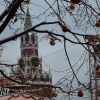 В ожидании Нового года :: Катерина Клаура