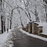 Нелюбинский источник (холодный) :: Леонид Сергиенко