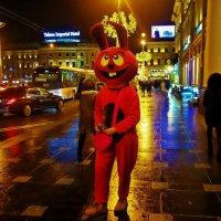 Розовый кролик... :: Sergey Gordoff