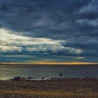 Финский залив :: Михаил Манеев