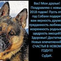 С Новым 2018 годом! :: Дмитрий Строганов