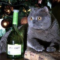 Новый год :: Андрей Бондаренко