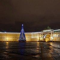 Новогодняя ель на Дворцовой площади :: Сергей
