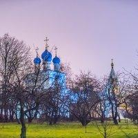 Москва. Коломенское. Перед Новым годом. :: Игорь Герман