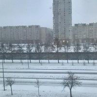 Утро 1 января 2018 :: Митя Дмитрий Митя