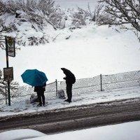 Снег, ... однако ... :: Владимир Икомацких