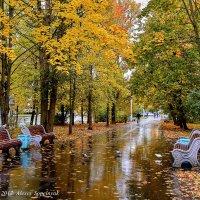 ....  еще одна осень :: Алексей Сопельняк