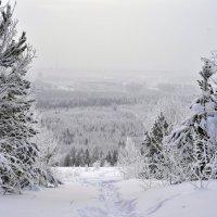 Зима :: Александр Кочуркин