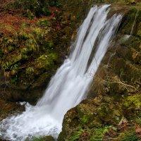 водопад на маленьком ручье :: Elena Wymann