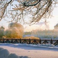 Зимняя картинка... :: Александр Никитинский