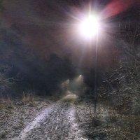 Ночная тропинка :: Ирина Крохмаль