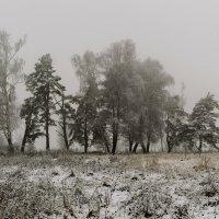 Туман за околицей. :: Владимир Гришин