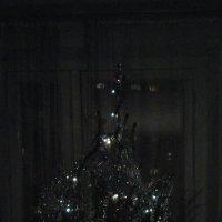 Новогодняя ёлка :: Дмитрий Никитин