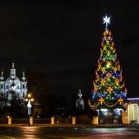 Новогодний Петербург :: Лариса Лунёва