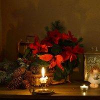 Накануне Рождества... :: Валентина Колова