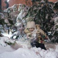 Зимнее счастье :: Ануш Хоцанян