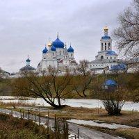 Боголюбский женский монастырь :: Леонид Иванчук