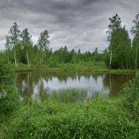 974 :: Михаил Менделеев